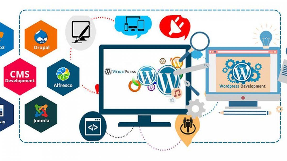 WordPress Tema Geliştirme   İstanbul Dijital Pazarlama Ajansı