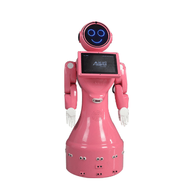 mini ada - Akınsoft Robot