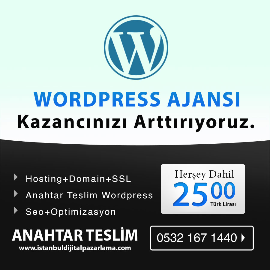 wordpress ajansi - Perpa Web Tasarım ve Yazılım Ajansı